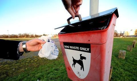 Stock image of a dog poo bin.