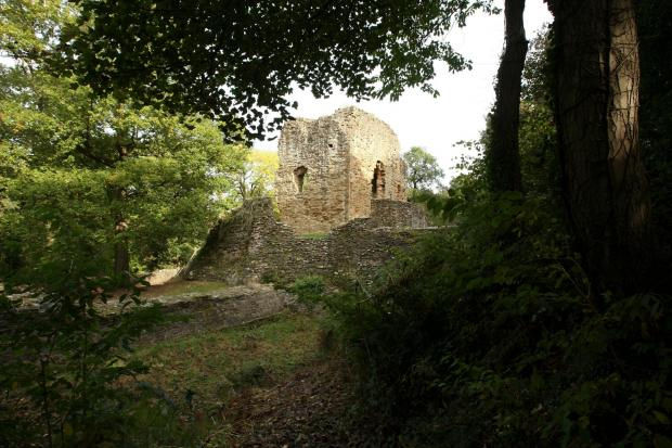 The Leader: ITV has declined to comment on whether Ewloe Castle (pictured) and other North Wales castlescould be a potential location for the next series of I'm A Celebrity...Get Me Out Of Here!