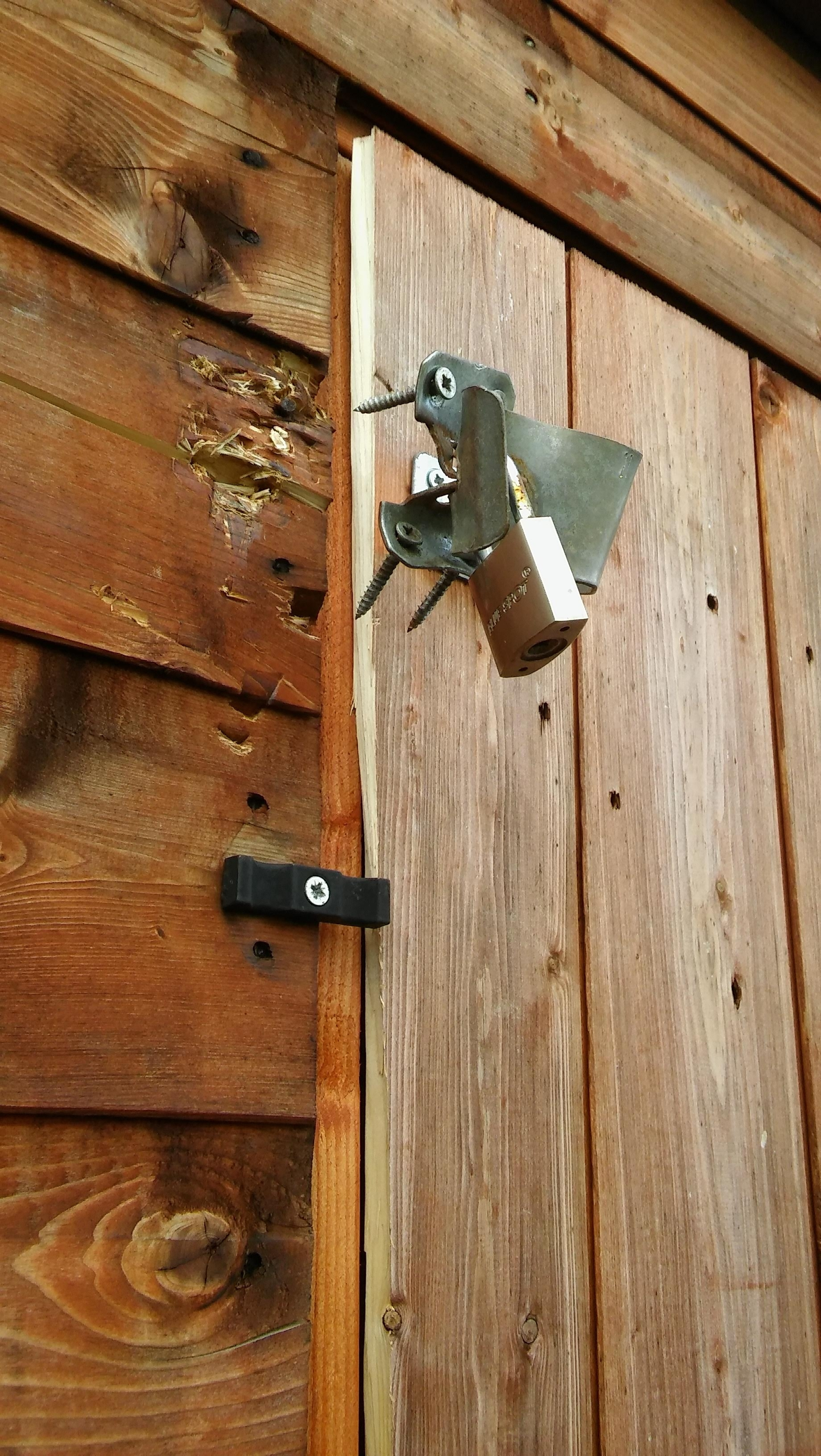 Break-in at Mill Lane allotment sparks safety concerns